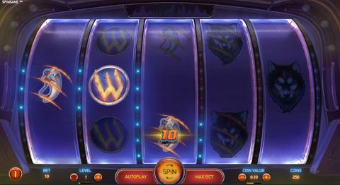 Online Casino «Spinsane Slot»
